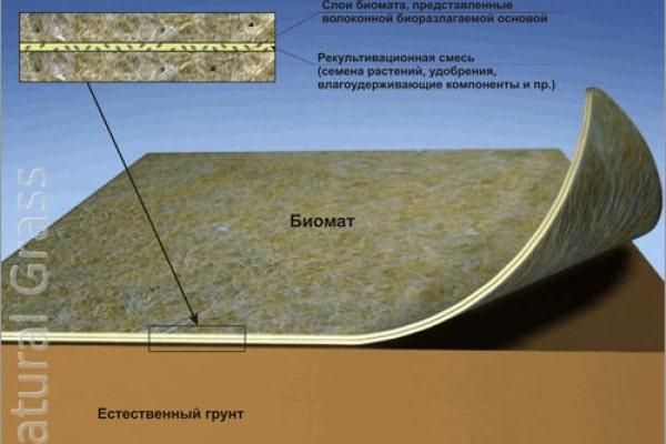 Биомат