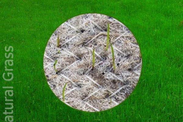 Биомат, как тканный материал