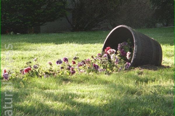 Опрокинутый кувшин с цветами
