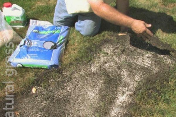 Лечение газона, внесение удобрений