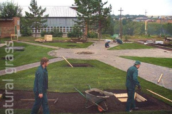 Комплекс работ по озеленению
