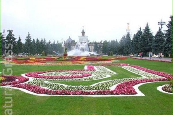 Газон в парке у Речного вокзала Москвы