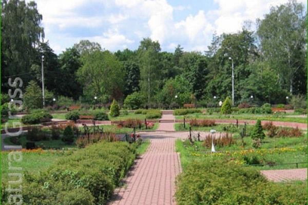 Газон парка «Сокольники»