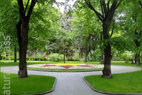 Газон в Петровским парке