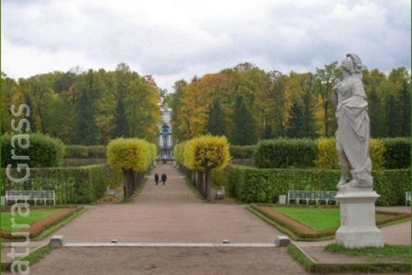 Газон Екатерининского парка