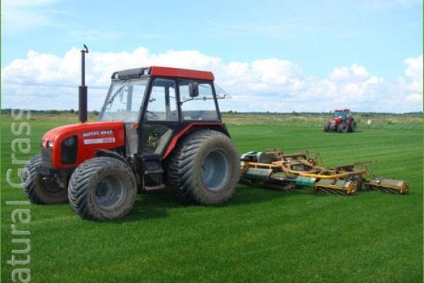 Покос газонной травы