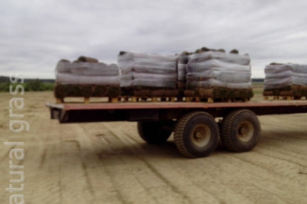 Доставка грузов по областям
