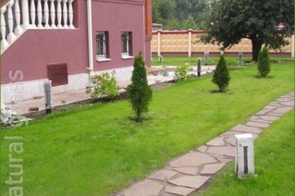 Сеянный парковый газон